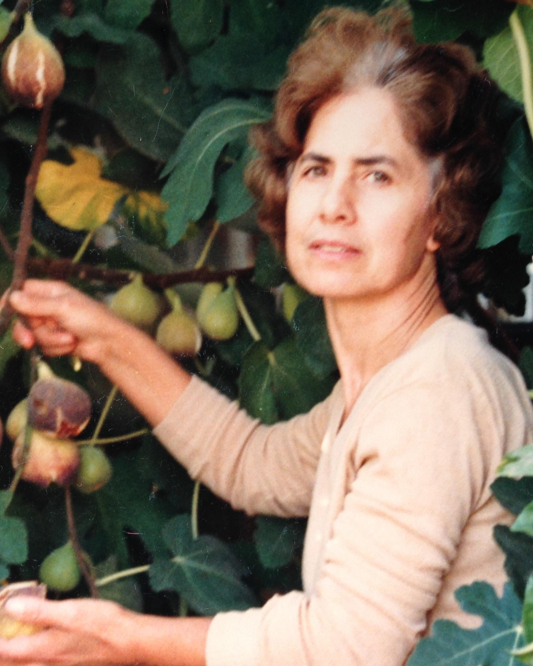 Obituary of Maria Sgro | DeStefano Funeral Home and